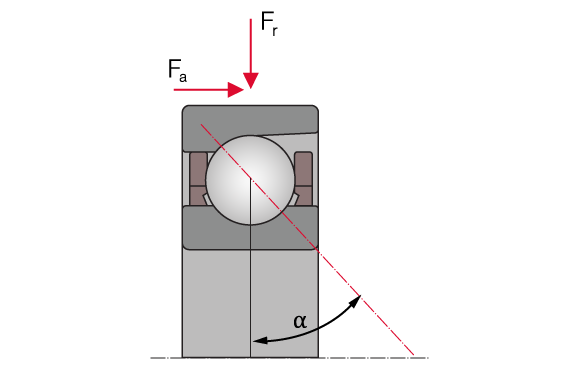 Structure of an Spindle Bearings